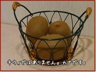 マルチバスケット(ラウンド)DY-556